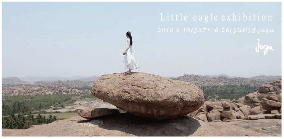2016 spring summer Little eagle exhibition