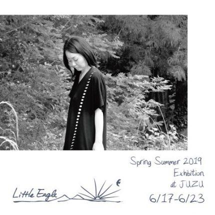 Little Eagle Sprng-Summer 2019 Exhibition at JUZU